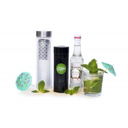 Kit Infusion Menthe